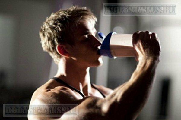 Тренировка, питание и добавки для эндоморфа