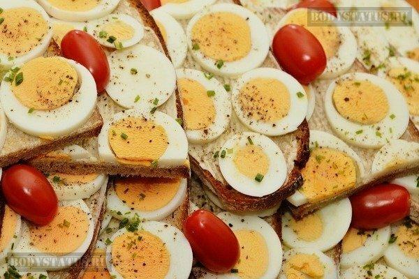 Полезные свойства яиц: 8 причин употреблять в пищу яйца